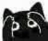 :blackcat_11112:
